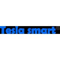 Tesla Electronic