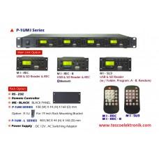 Avit Audio 1 Kanal Kaydedici / 4 Kanal MP3/USB/SD Card Okuyucu